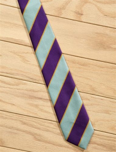 Elico Cadet PC Tie in Blue, Purple & Gold